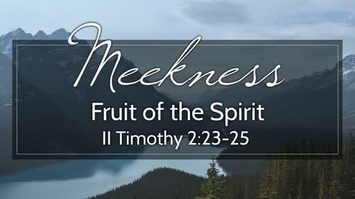 364 - Fruit of the Spirit - Meekness