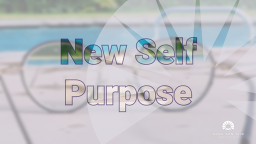 2019 | New Self Purpose