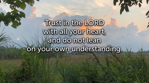 May 19 - Trust in the Lord