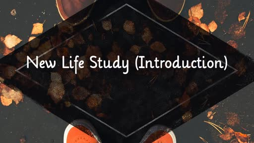 New Life Study (Introduction)