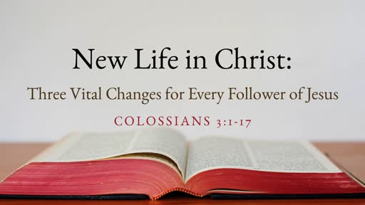New Life in Christ: Three Vital Changes for Every Follower of Jesus