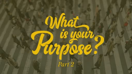 What is your purpose, week 2?
