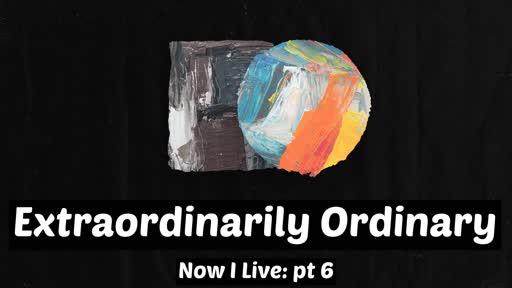 Extraordinary Ordinary - Stephen