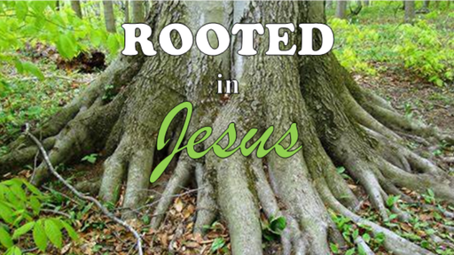 5/26/2019 - Rooted In Jesus