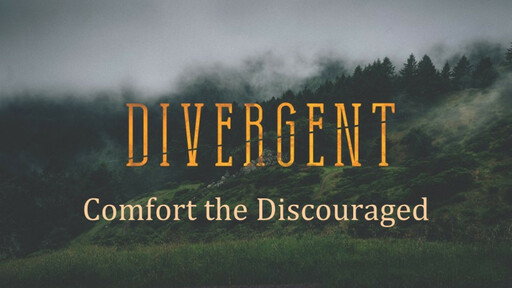 Comfort the Discouraged