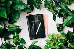 Bible Study 25 image
