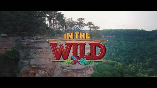 VBS 2019 Theme Video