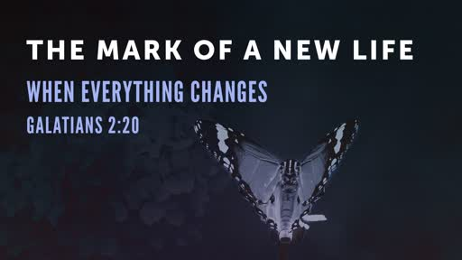 The Mark of A New Life