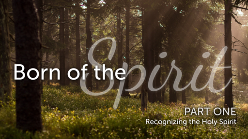 Recognizing the Holy Spirit
