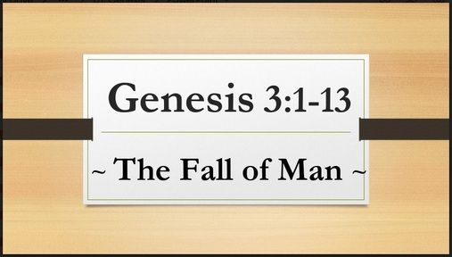 Genesis 3:1-13 - The Fall of Man: Naked and Afraid