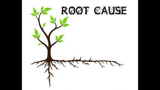 Roots