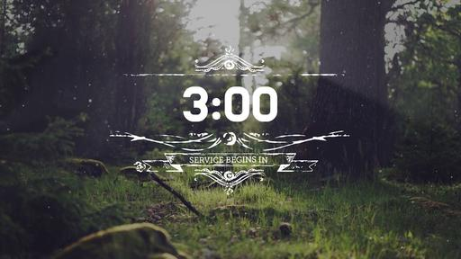 Summer Woods - Countdown 3 min