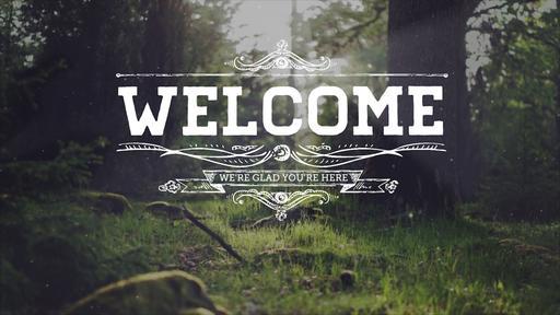 Summer Woods - Welcome