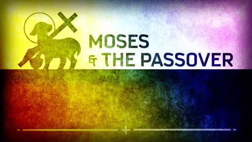 June 23rd, 2019 - Moses & the Passover - You are Covered by the Blood of the Lamb