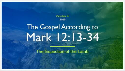 Mark 12:13-34 - The Inspection of the Lamb