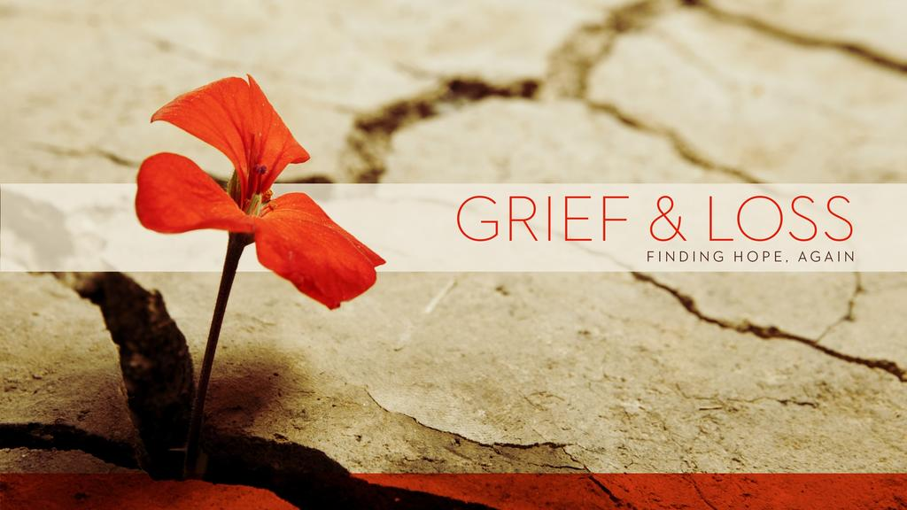 Grief and Loss large preview