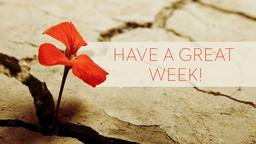 Grief and Loss have a great week! PowerPoint Photoshop image