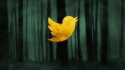 Dark Woods twitter PowerPoint Photoshop image