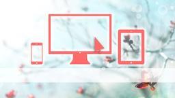Spring Bloom website PowerPoint image