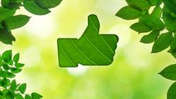 Summer Leaves facebook PowerPoint image