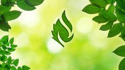 Summer Leaves faithlife PowerPoint image