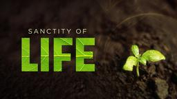 Sanctity of Life PowerPoint image