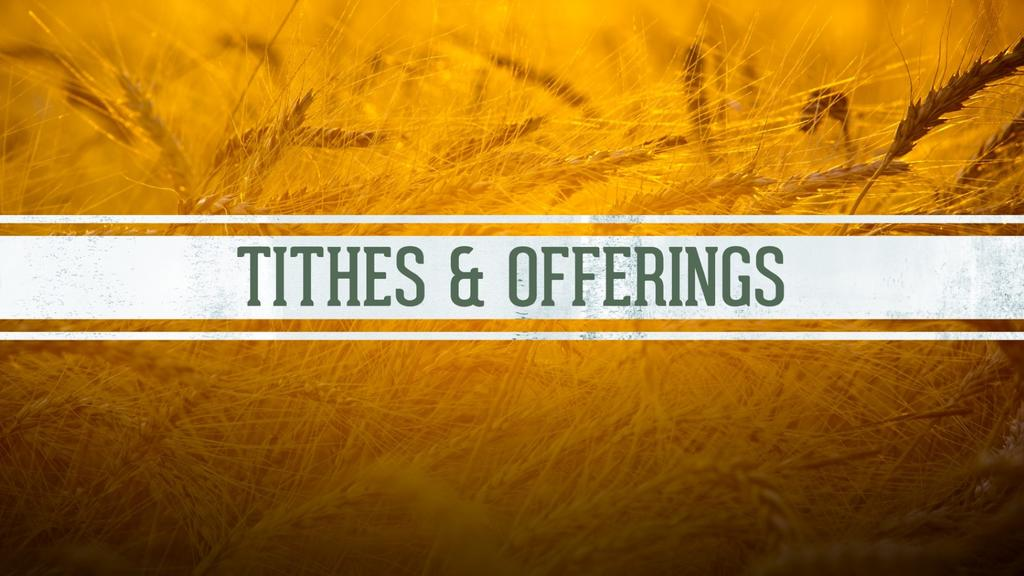 Harvest-Tithes-and-Offerings large preview