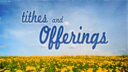 Dandelion Field tithes and offerings PowerPoint image