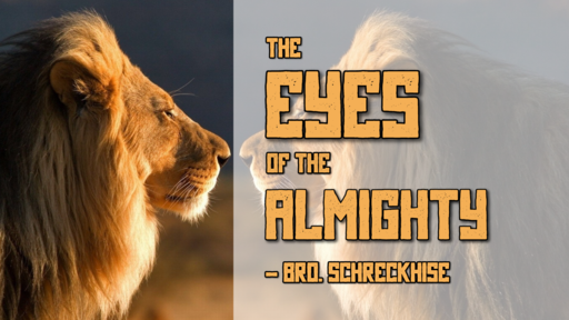 The Eyes of the Almighty