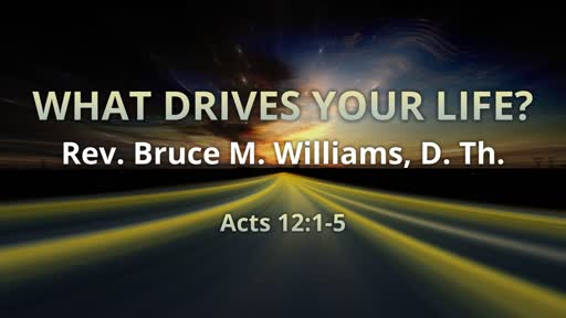 What Drives Your Life?