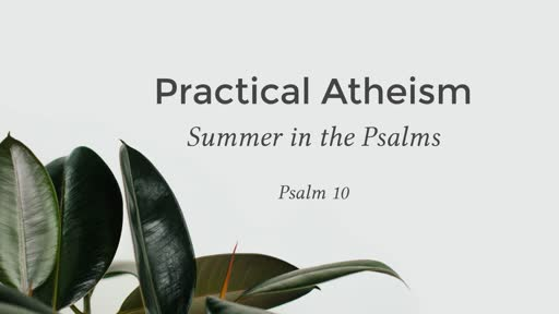 Summer in the Psalms - Psalm 10