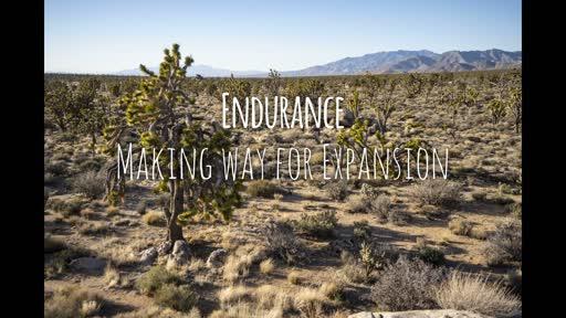 Endurance: Making Way For Expansion