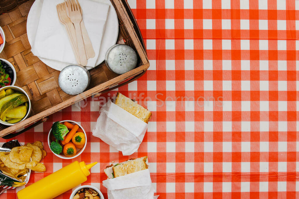 Picnic large preview