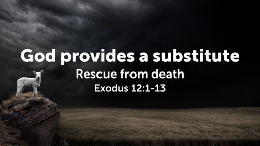 God provides a substitute: rescue from death