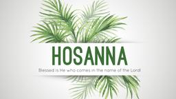Palm Sunday hosannah 16x9 PowerPoint Photoshop image