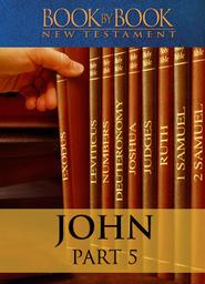 Book by Book: John - Part 5 - Shining (Ch. 8-10:21)