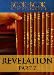 Book by Book: Revelation Part 7 - Jesus, treading the winepress (Ch. 14:6-16:21)