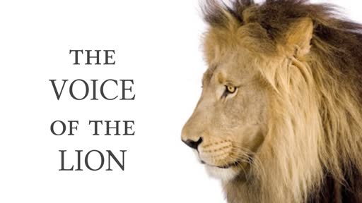 The Voice of the Lion