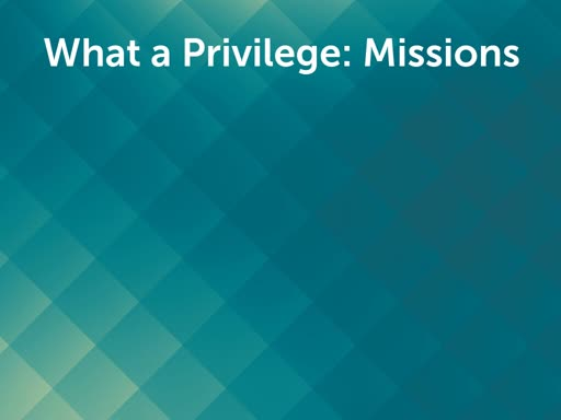 What a Privilege:  Missions