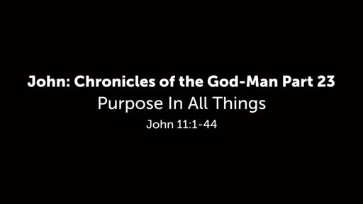 Purpose In All Things