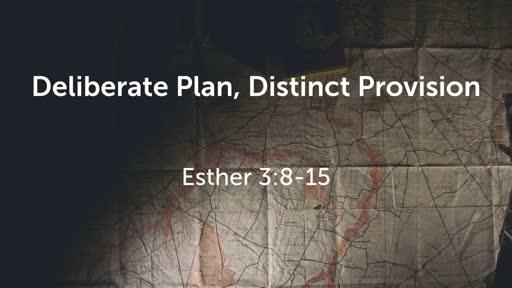 Deliberate Plan, Distinct Provision 2
