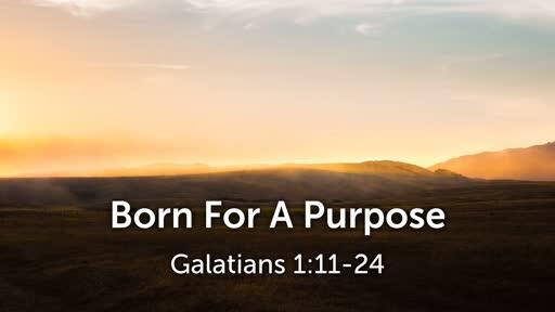 Born For A Purpose (Galatians 1:11-24)