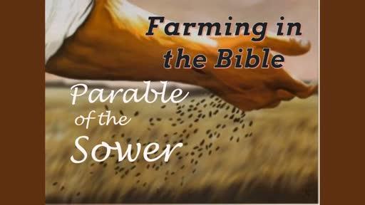 Farming in the Bible