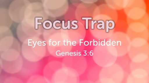 Focus Trap: Eyes for the Forbidden // Pastor David Spiegel