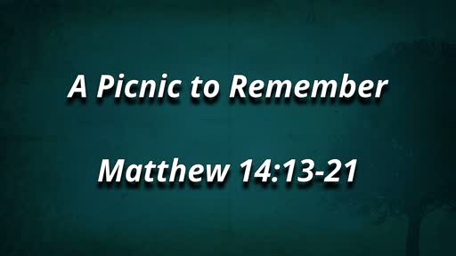 A Picnic to Remember