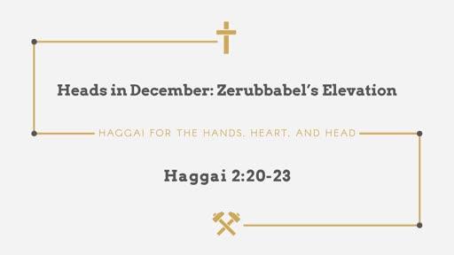 Heads in December: Zerubbabel's Elevation