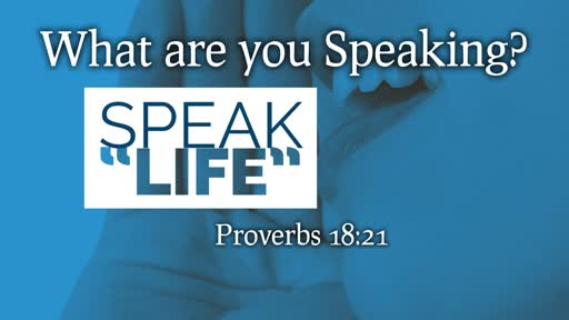 Declarations, part 2 // Speak Life // Pastor David Spiegel