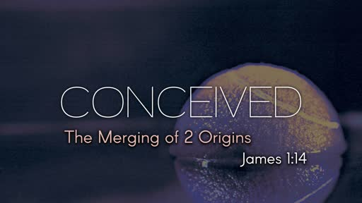Conceived (The Merging of 2 Origins)