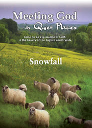 Meeting God In Quiet Places -Sheep