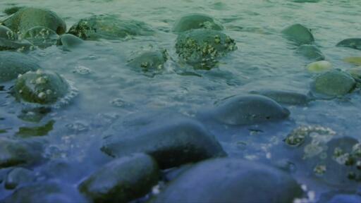 Rocky Creek - Content - Motion
